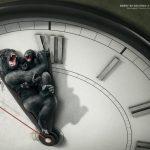 Bund - Cada 60 segundos una especie muere