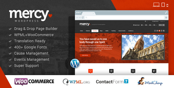 Tema WordPress Mercy-NGO